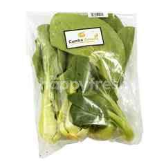 Cambo Green Organic Green Pakchoy