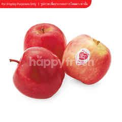 Gourmet Market Apple Pink Lady