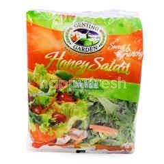 GENTING GARDEN Honey Salad