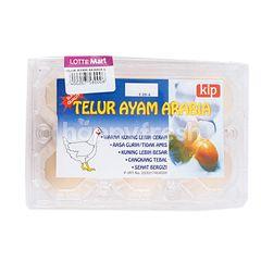 Kip Arabian Chicken Egg