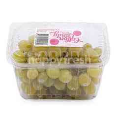 Olive Grove Green Grapes