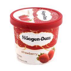 Häagen-Dazs Haagen-Dazs Strawberry Ice Cream