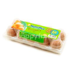 Nutriplus Omega-3 Eggs (L Size)