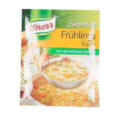 Knorr Fruhlings Soup