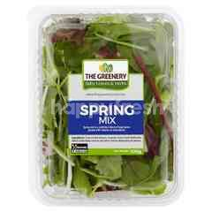 Classic Spring Mix Herbs