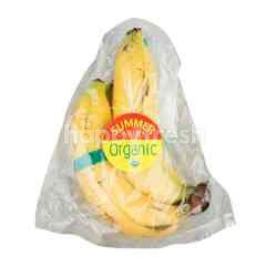 ซัมเมอร์ ฟรุ๊ท กล้วยหอม ออร์แกนิค 4 ลูก