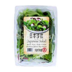 SPRING Japanese Salad