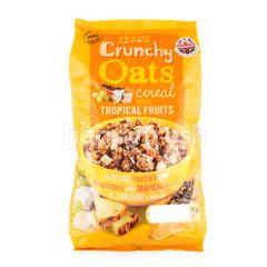 Tesco Peanut Tropical Fruit Oat Cereal