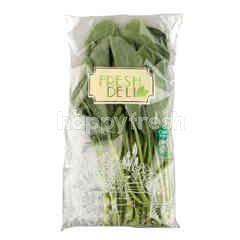 Fresh Deli Hydroponic Tipped Kale