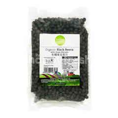 SIMPLY NATURAL Organic Black Beans (Green Kernels)