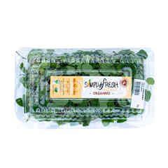 Simply Fresh Organics Oregano