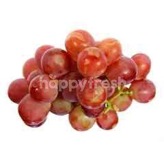 Grapes China Red Globe