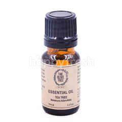 The Olive Tree Tea Tree Essential Oil