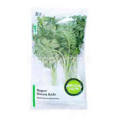 Amazing Farm Super Green Kale