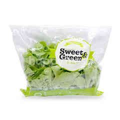 Sweet & Green Green Oak Lettuce