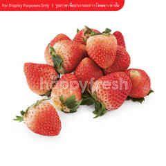 Gourmet Market Imported Strawberry (USA)