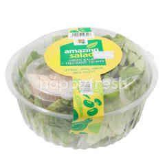 Amazing Salad Assorted Lettuce