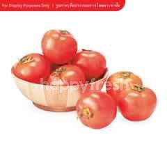 Ek Thai Holland Beef Tomato