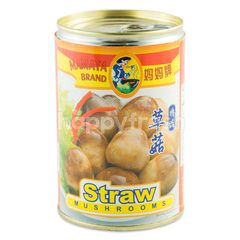 Mamata Brand Straw Mushrooms