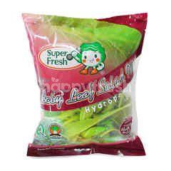 Super Fresh Baby Leaf Salad Mix