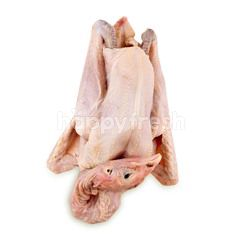 Whole Big Kampong Chicken