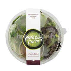 Amazing Farm Fiesta Salad