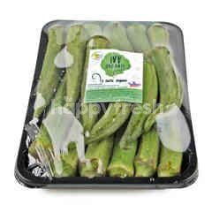Wb Organic Green Okra