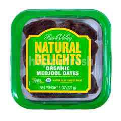 Bard Valley Natural Delights Kurma Medjool Organik