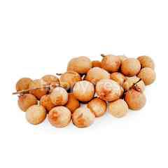 FreshBox Gold Longan