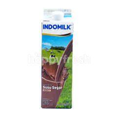 Indomilk Pasteurized Milk Drinks Chocolate