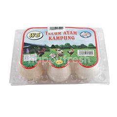 WS Kampong Chicken Egg
