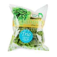 ACK Salanova Salad
