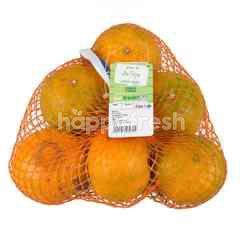 Tesco Shogun Orange