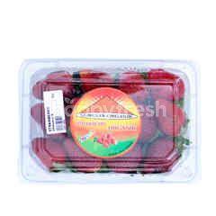 Semesta Strawberry