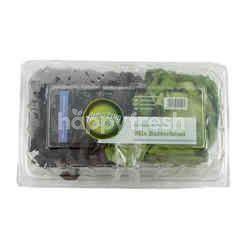 Amazing Farm Salanova Mix Butterhead Lettuce