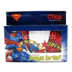 GT man Superman Boy's Briefs 3's - Size L