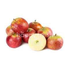 Organic Juliet Apple