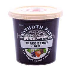 Anathoth Farm Three Berry Jam