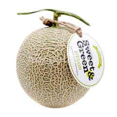 สวีท แอนด์ กรีน เมล่อนญี่ปุ่น เนื้อเขียว 1.5-1.6 กก.