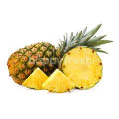Sunpride Honi Pineapple