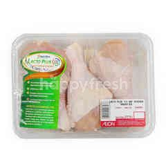 NUTRI PLUS Lacto Plus III ABF Chicken Drumstick ~500g