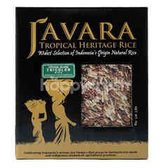 Javara Tricolor Special Blend Rice
