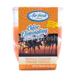 Air Fresh Odor Eliminating Tropical Paradise