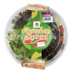 Amazing Farm Salat Garden