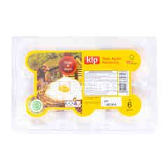 KIP Kampong Chicken Egg