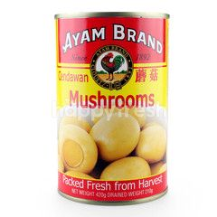 Ayam Brand Mushrooms