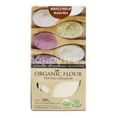 Bionic Farm Organic Brown Rice Flour