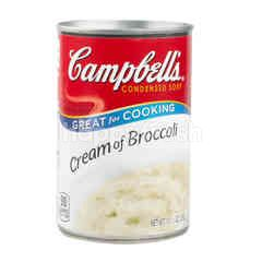 Campbell's Condensed Soup Cream Of Broccoli