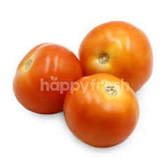 Cameron Tomatoes