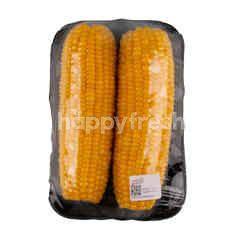 Gourmet Market Sweet Corn